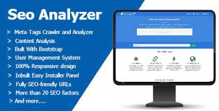 SEO Analysis Services analyser