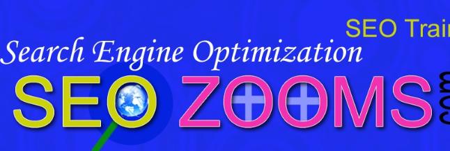 SEO Zooms India