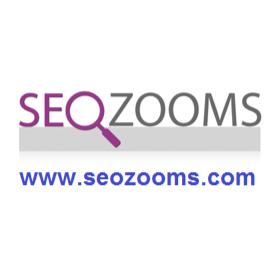 SEO Zooms